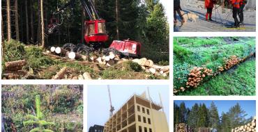 """Video og foiler fra webinaret """"Landbruksstrategi Viken, handlingsplan skog Oslo Viken, virkemidler næringsutvikling"""""""