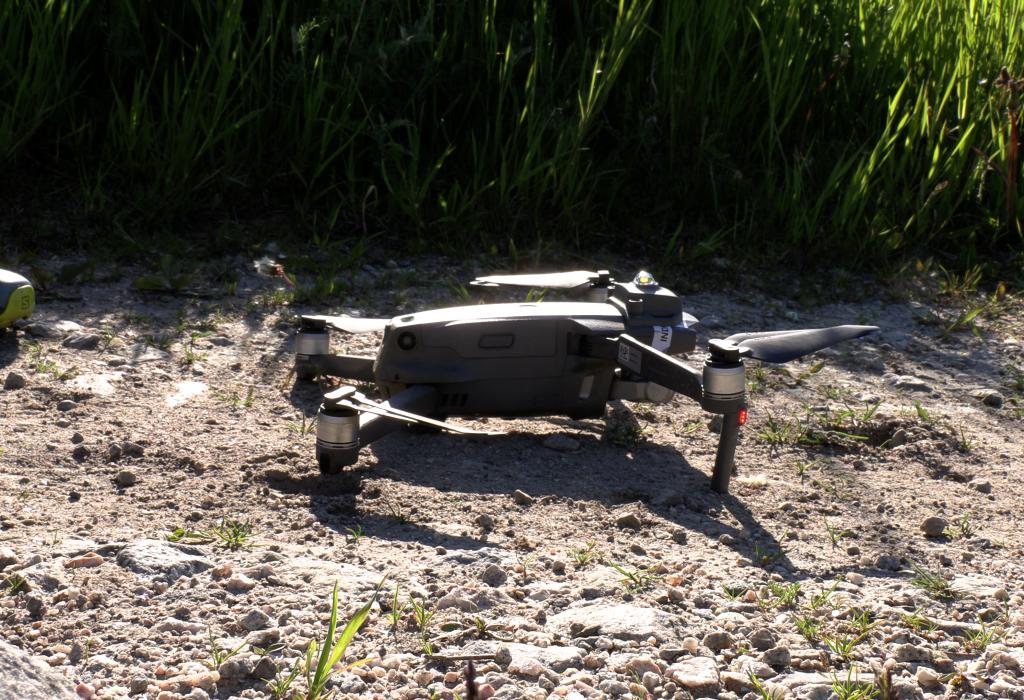 Redder dyreliv med bruk av drone